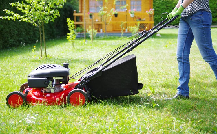 thumbnail of How Will These Lawn Mowers Cut Down Your Trimming Time?