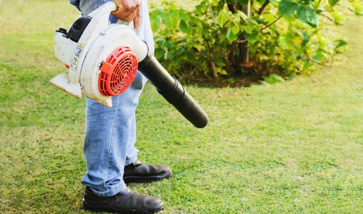 banner-1 of Which Leaf Blowers Blow the Competition Away?