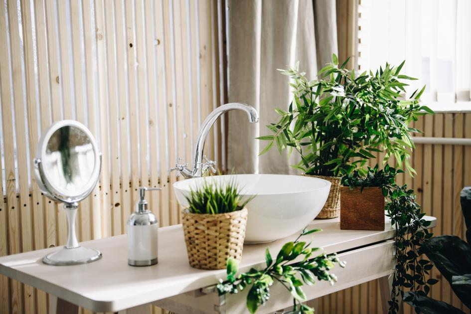 thumbnail of Your Bathroom Looks More Beautiful With the Right Plants